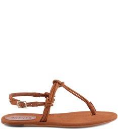 Flat Minimalist Camel