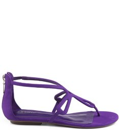 Flat Colorful Violeta