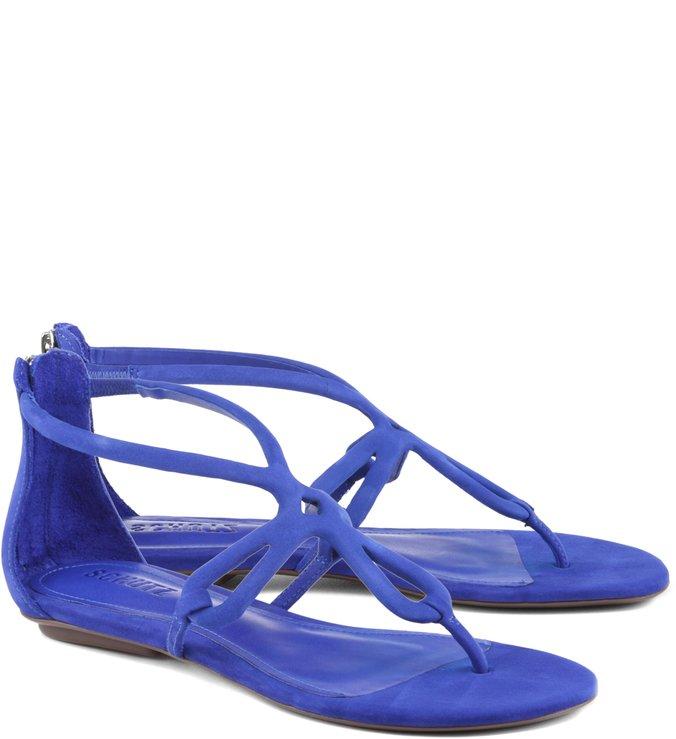 Flat Colorful Azul Klein