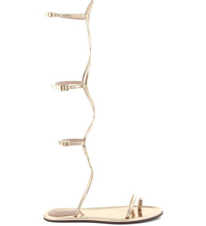Flat Sandal Thin Stripes Gladiator Platina