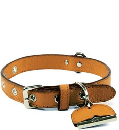Bracelete Light Wood Dog Charm