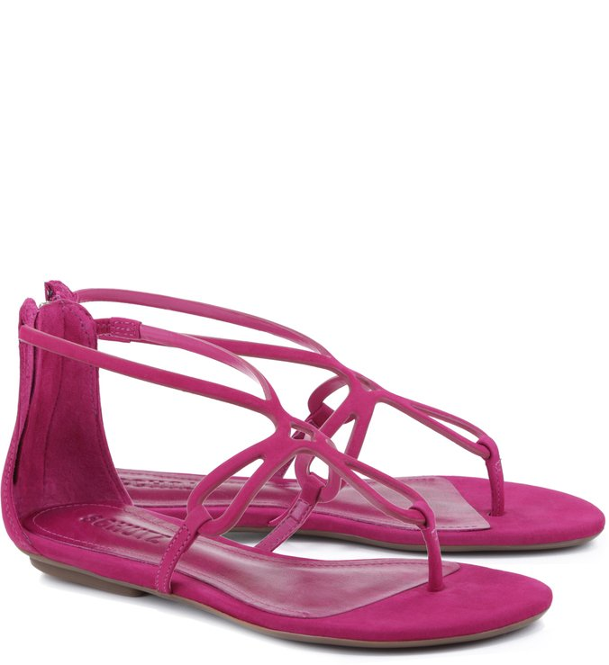 Flat Colorful True Pink
